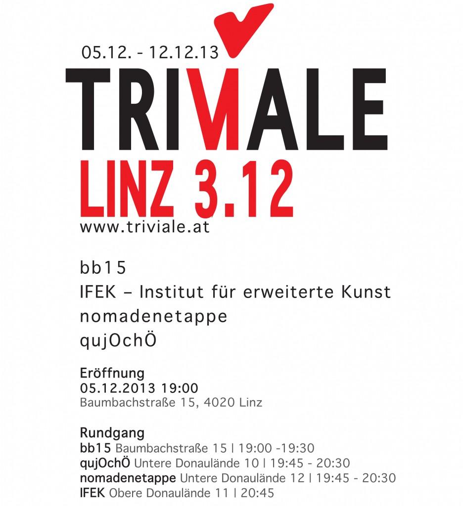 Plakat_triviale_3.12.indd